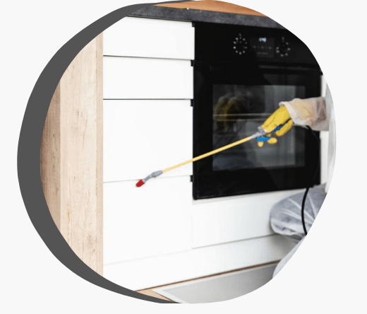 Professional Pest & Termite Control Company Highton