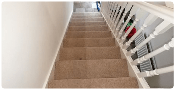 Professional End Of Lease Carpet Cleaning